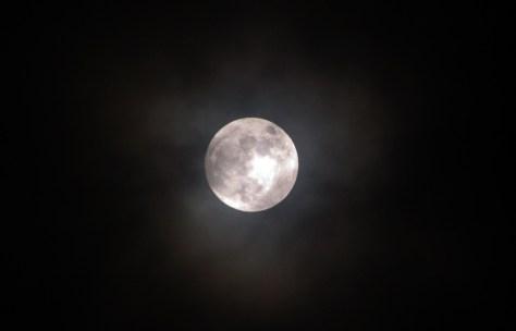 Luna. Foto de Claudia González Machado