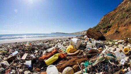 ecologistas-accion-promocion-abandonados-diferentes_ediima20150918_0892_4