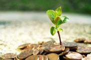 el-desatino-de-desenvolvimento-sustentavel_novos-rumos-para-a-humanidade