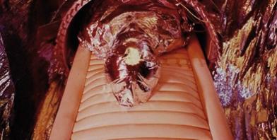 El primer hombre crionizado, el Doctor James Hiram Bedford, fue sometido al proceso tras su muerte en 1967. Foto: Revista Life