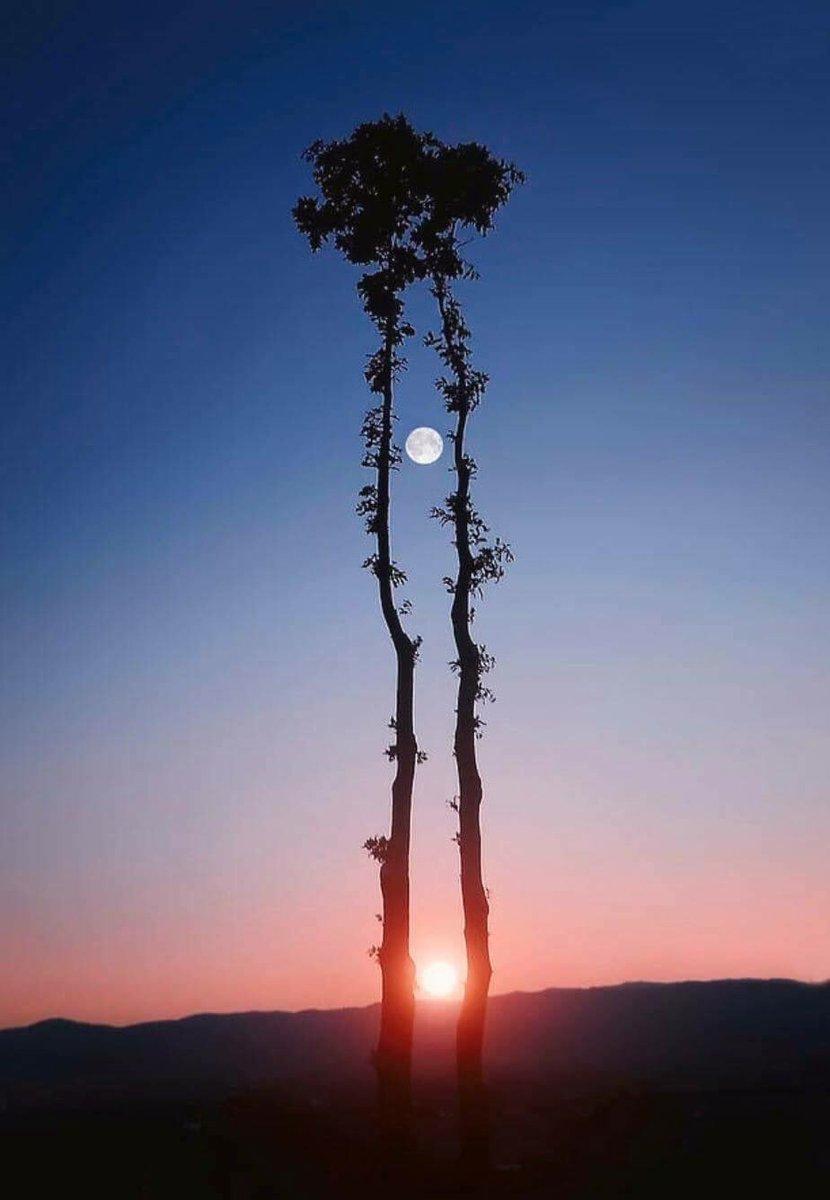 imagen histórica -luna y sol