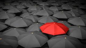 multitud de paraguas 3